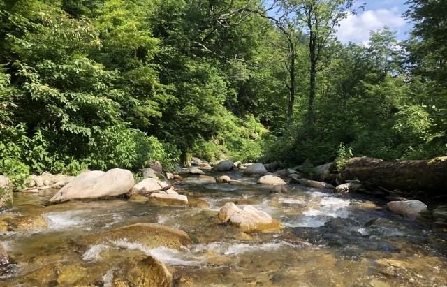 山の手大地の凸凹を作ってきた川とその水源